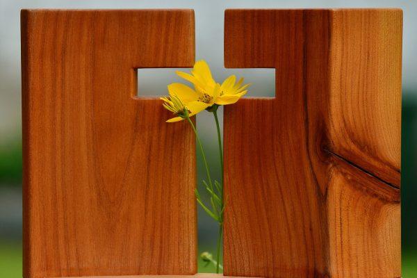 flower in cross